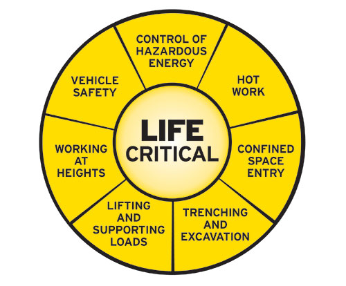 Life Critical Standards