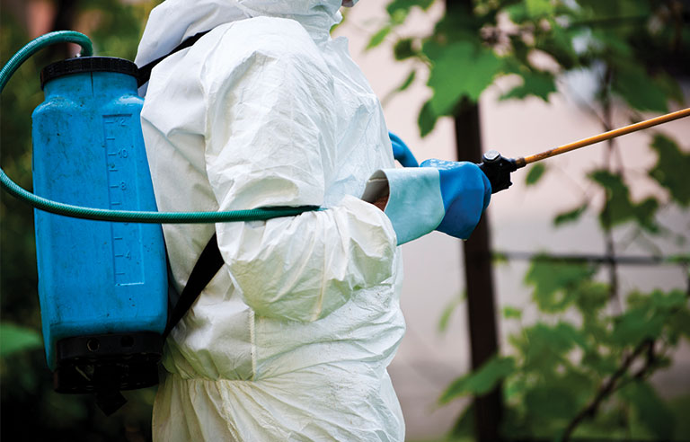 spraying-pesticide.jpg