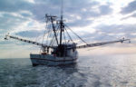 florida shrimper