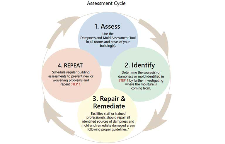 Assessment-cycle.jpg