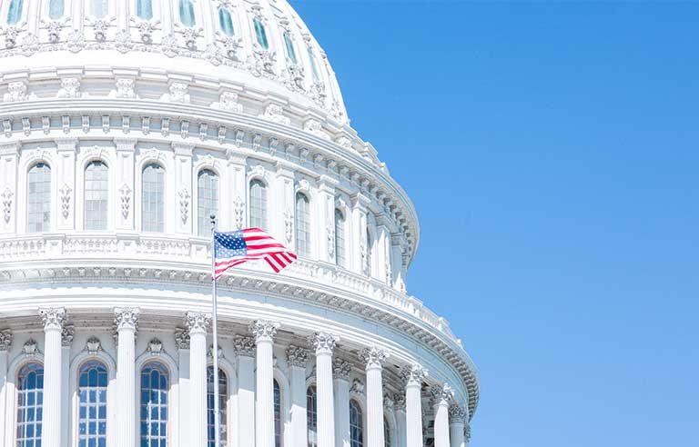 US Capitol-flag