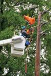 powerline-repairman.jpg