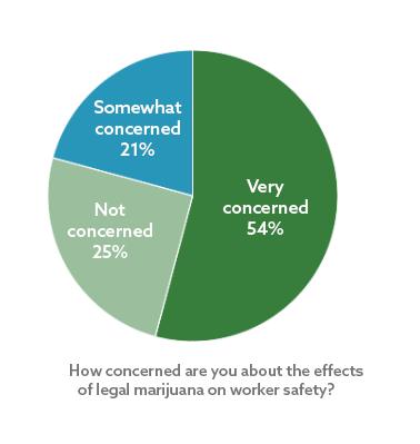 What's Your Opinion: Marijuana