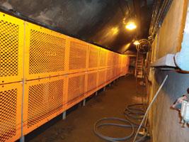 Conveyor Guard